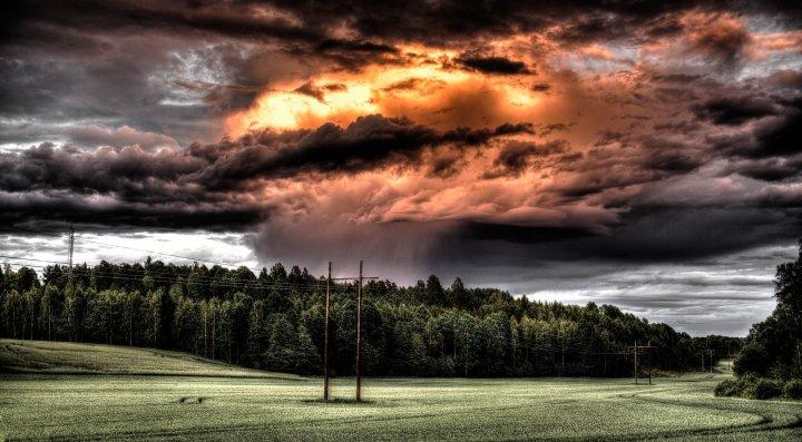 Poetry: Summer Storm